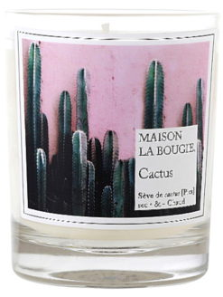 Cactus Tuberose Scented French Candle