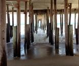 Pier Underbelly