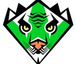 Green Javan Tiger Karate Black Belt Super Hero Badge