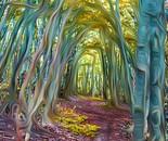 Weaved Woods II