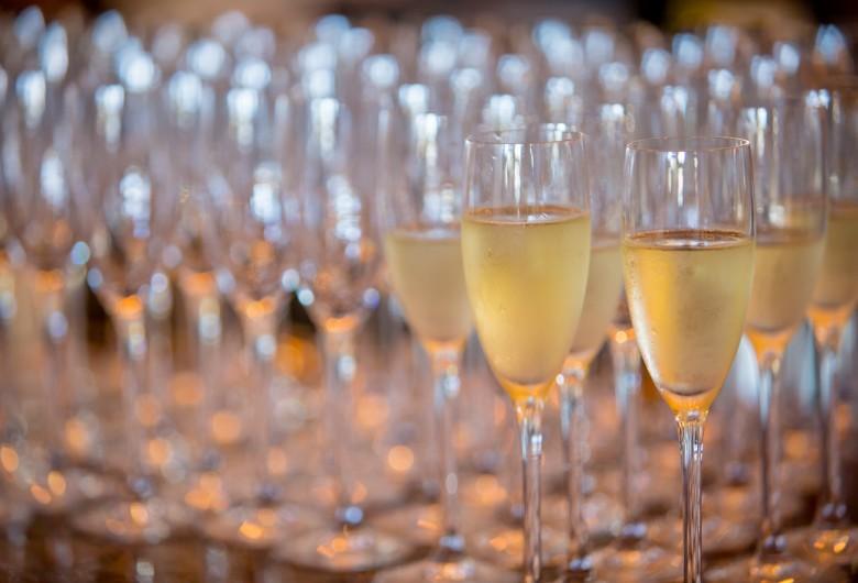 searsucker champagne