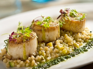 "Scallops ""East Coast"" + Israeli couscous + almonds + citrus vinaigrette #"