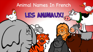 les-animaux_french