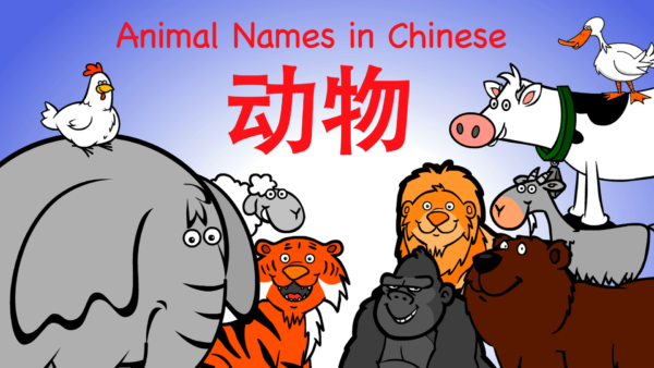 animal_names_in_chinese