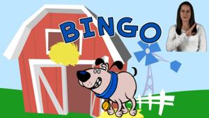 bingohearingcover