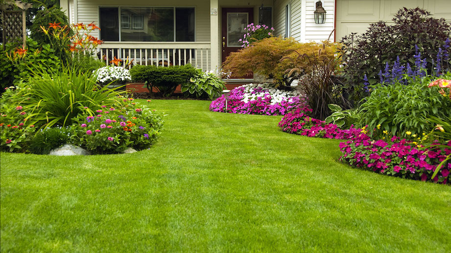Spring Gardening Tips: Fort Collins Lawn Care