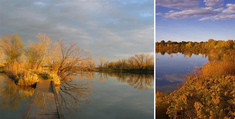 Riverbend Pond