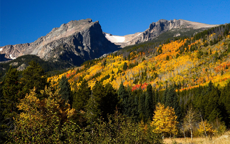 Places to See Fall Color Colorado Rocky Mountain National Park