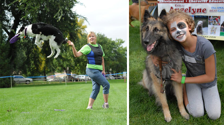 Fort Collins Fall Events Dog Olympics