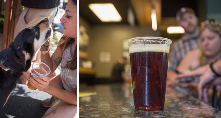 Snowbank Brewing Fort Collins Colorado trivia nights pub quiz