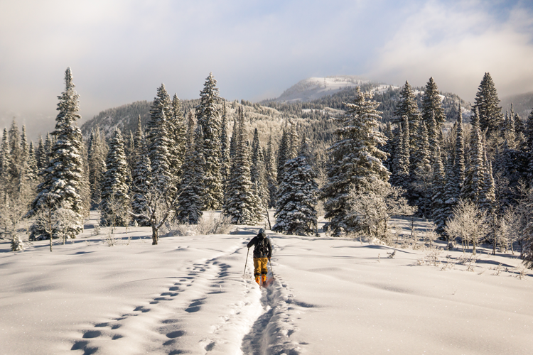 where to go cross country skiing in Fort Collins Loveland Greeley Colorado