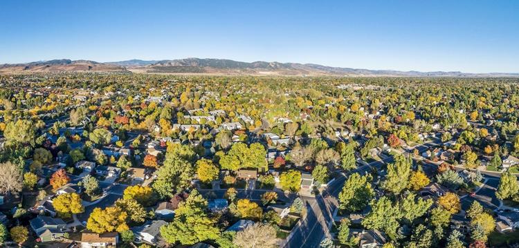 Northern Colorado Real Estate 2020