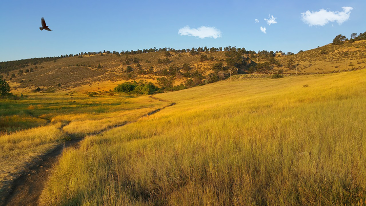 Moving from Denver to Fort Collins | Outdoor Recreation
