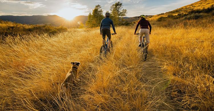 Biking in Northern Colorado 2020