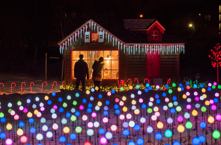 Garden of Lights at The Gardens on Spring Creek Fort Collins, CO