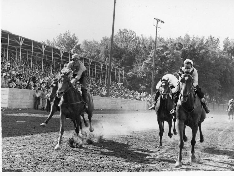 The Greeley Stampede History