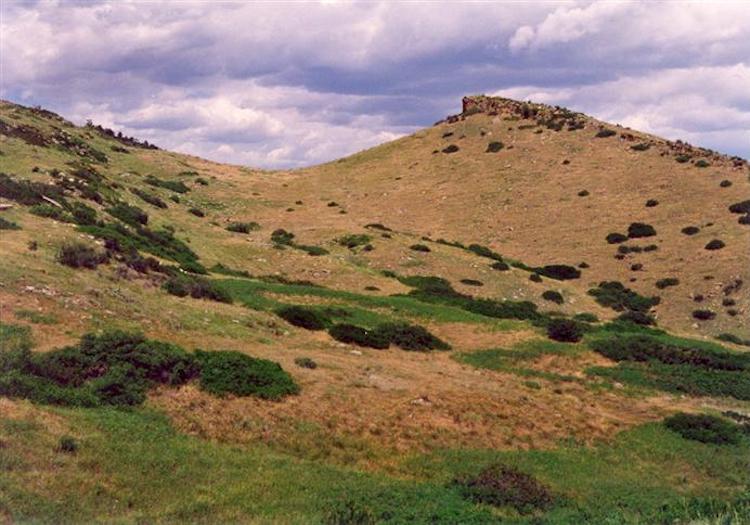 Coyote Ridge Trail Colorado