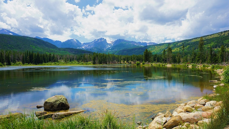 Ways to Celebrate Earth Day in Northern Colorado