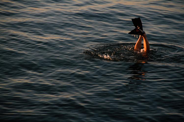 Swimming beaches and lake near Ann Arbor Michigan