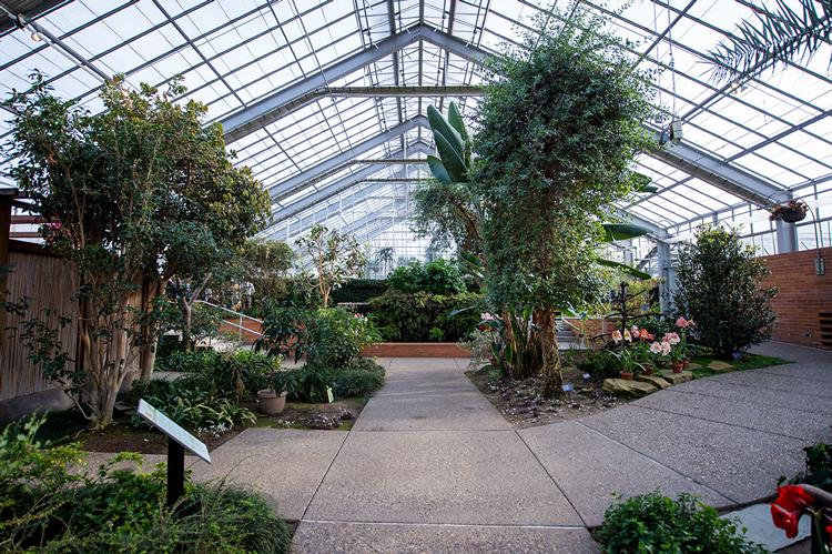 Matthaei Botanical Gardens & Nichols Arboretum Ann Arbor
