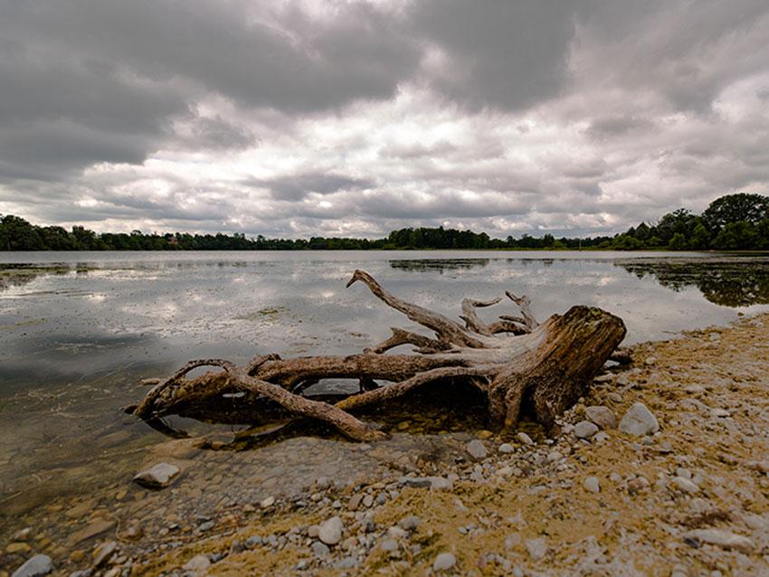 _Watkins_Lake_State_Park_water
