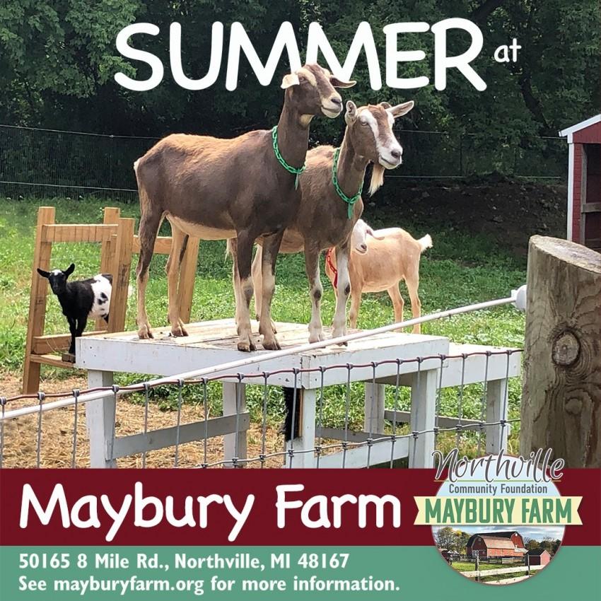 Maybury Farm, Northville, Michigan