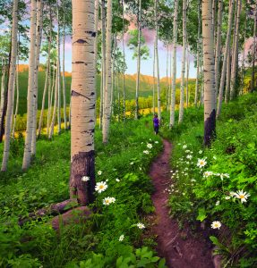Berry-Picker-Trail-Vail-Colorado1-980x1024