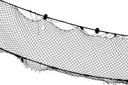 Fish-net