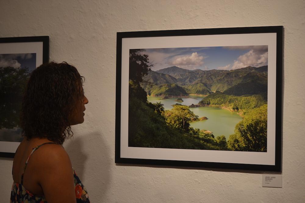 """""""Dos Años de Fotosafaris"""""""