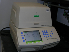CFX 96 Real-Time PCR Detection System