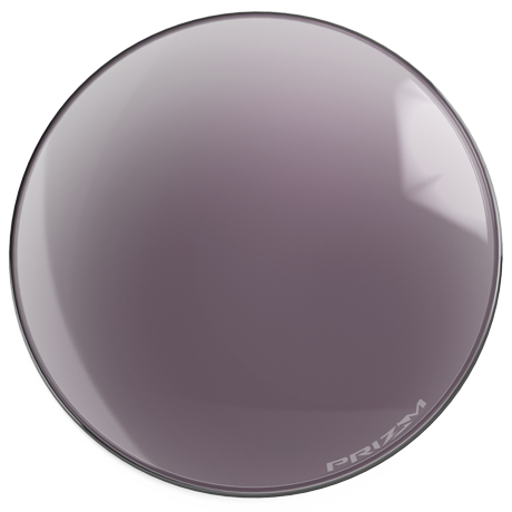 site oakley  puck_prizm daily polarized.png
