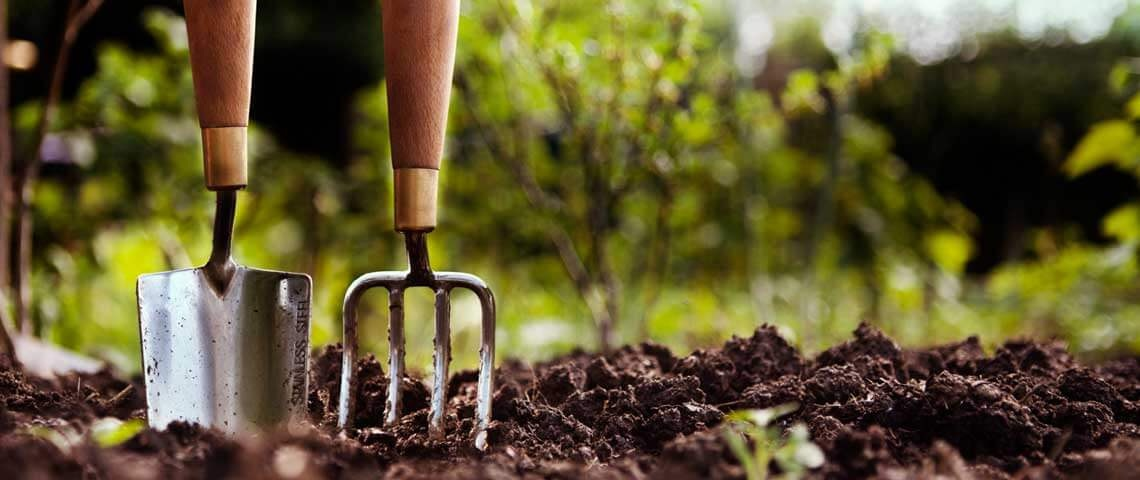 Amending Your Garden Soil: Materials and Techniques