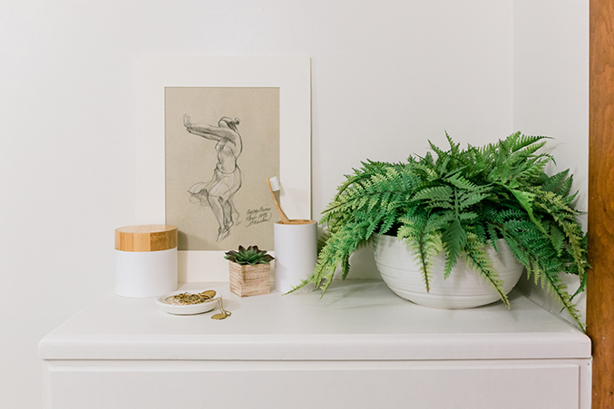 Time to Stock up on Ferns: Top 6 You Should Highly Consider