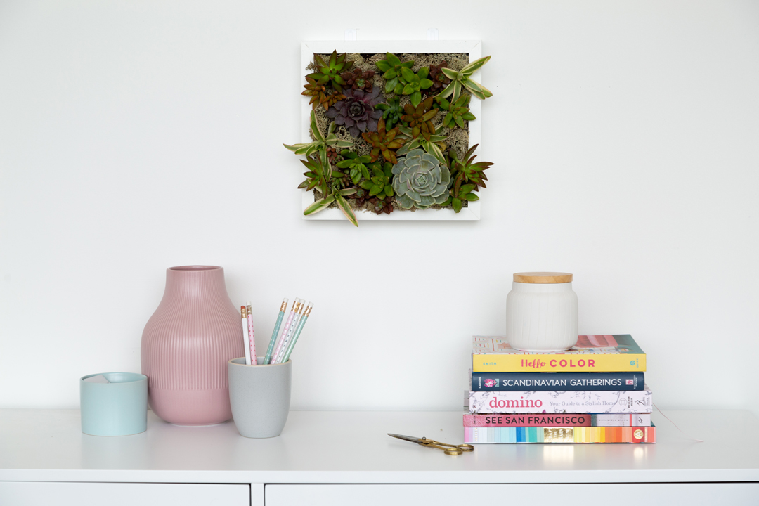 This Idea for Planting Succulents Is off the Wall, and We Mean That Literally
