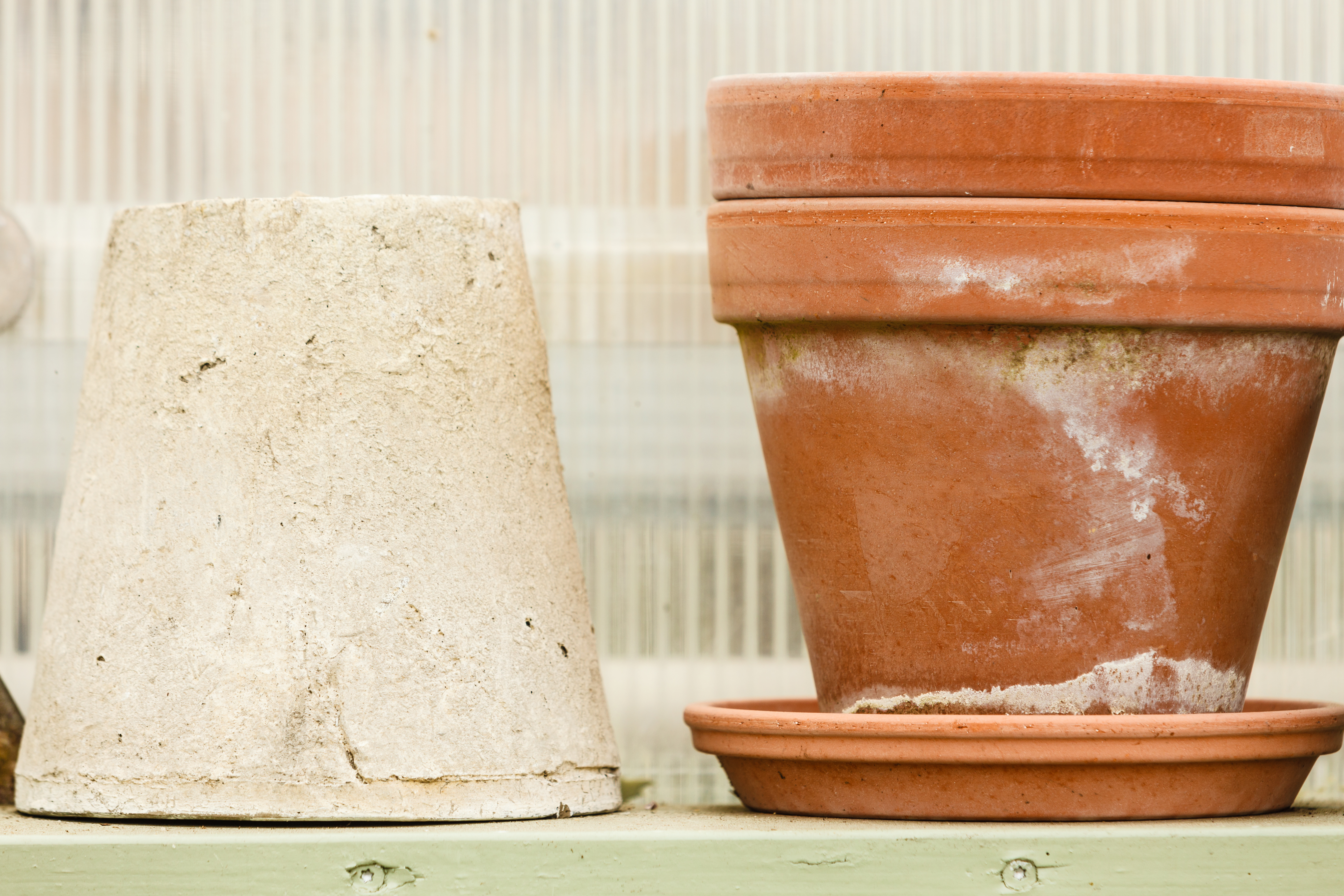 What's the White Stuff on Your Terracotta Pot? Here's the 411