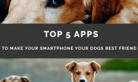 Top 5 Apps to Make Your Smartphone Your Dog's Best Friend