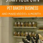 3 Reasons Why You Should Have Your Own Pet Bakery Business