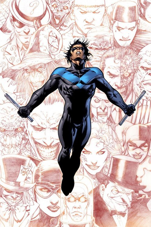 nightwing flies