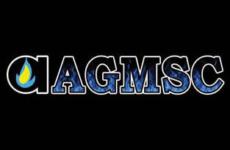 Next Up: AGMSC