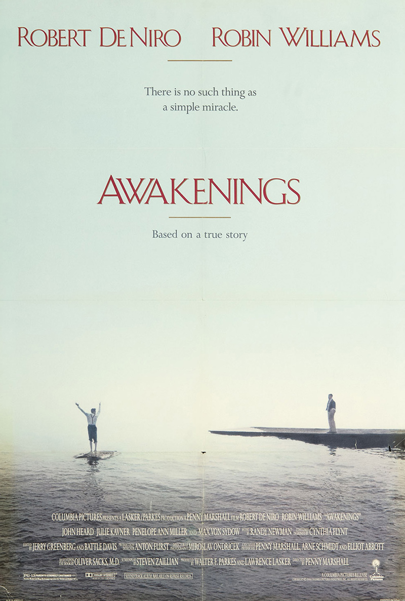 essays on the movie awakenings Essay throughout the movie the awakening, robin williams demonstrates his knowledge of the scientific method the scientific method is a procedure of steps that is used to prove problems.