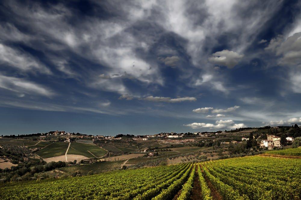 Montepulciano Main Image