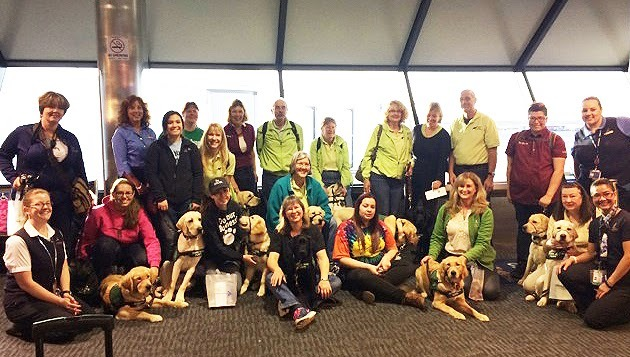 GDB Puppy Raisers stand in front of the luggage carousel teaching their guide dog puppies to be patient and get used to the motion and sound.