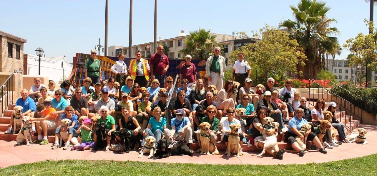 Big group photos of puppy raisers with their guide dog puppies on steps - beautiful sunny day with palms in the background.