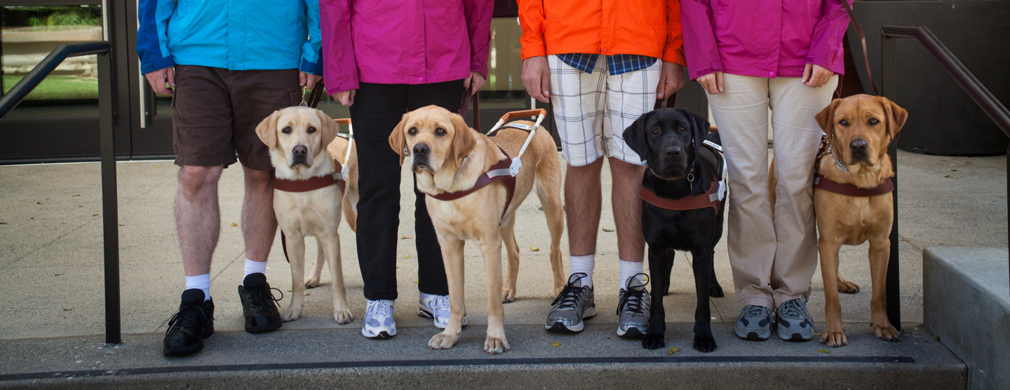 Four guide dogs pose with their handlers on the steps of the Student Residence on the San Rafael, CA campus