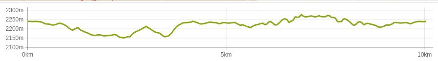 GHR Ooty 10k - elevation