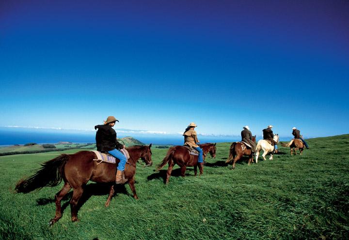 Horseback riding, Kohala | Hawaii Tourism Authority (HTA) / Kirk Lee Aeder
