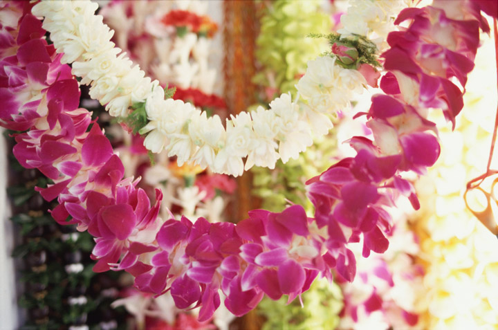 A flower shop located on Maunakea Street in Chinatown. Many lei made from fresh flowers such as orchids are placed in refrigerators. Hawaii Tourism Japan (HTJ) photo