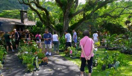 20111116_lyon_arboretum