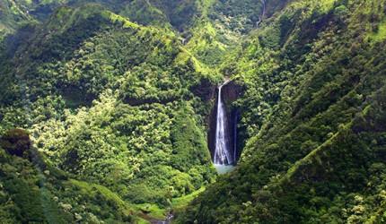 Photo: Lacy Varner/Hawaii.com
