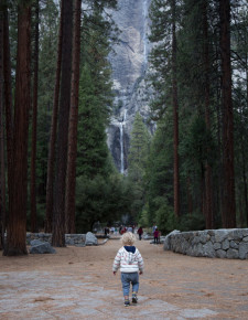 Yosemite-Hither-And-Thither-1